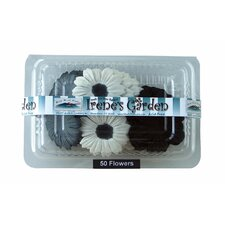 Irene's Garden Oblooms Flower Box (Set of 24)