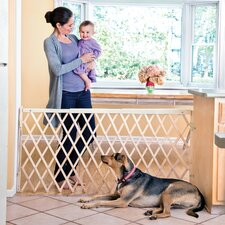 """Safety 60"""" Expansion Swing Gate"""