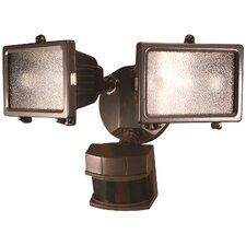 2-Light Floodlight