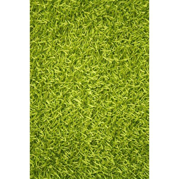 Noble House Sara Lime Green Shag Area Rug U0026 Reviews | Wayfair