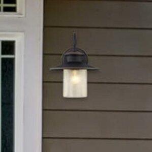 Delmont 1 Light Outdoor Barn Light