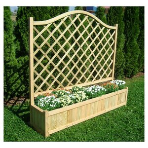 Planter Box with Trellis