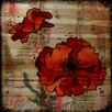 Marmont Hill 'Dark Red Poppies' by Vicki Butler Painting Print on Natural Pine Wood