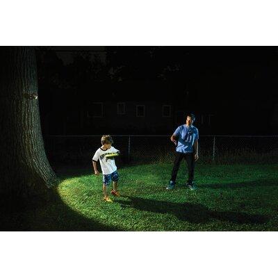 Mr. Beams LED Spot Light & Reviews