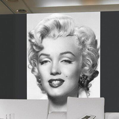 Brewster Home Fashions Ideal Decor Marilyn Monroe Wall Mural U0026 Reviews |  Wayfair Part 27
