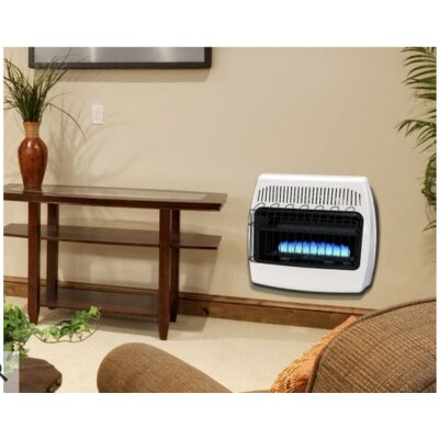 dynaglo btu wall mounted natural gas manual ventfree heater u0026 reviews wayfair