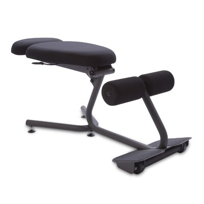 Posture Kneeling Chair health postures stance move kneeling chair & reviews | wayfair