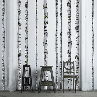 Attractive Walls Need Love Super Real Birch Wall Decal U0026 Reviews | Wayfair Part 8