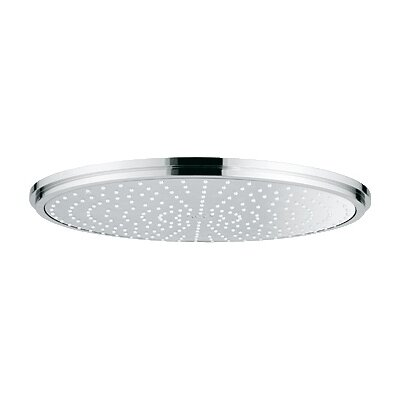 Grohe Rainshower Jumbo Shower Head & Reviews | Wayfair