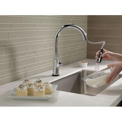 Delta Trinsic® Kitchen Single Handle Pull Down Standard Kitchen