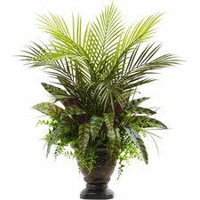 Mixed Areca Palm, Fern and Peacock Plant in Planter