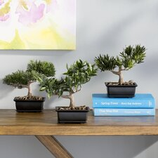 Silk Bonsai Desk Top Plant in Planter (Set of 3)