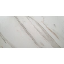 "Pietra Calacatta 12"" x 24"" Porcelain Field Tile in White"