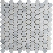 "Arabescato Carrara 12"" x 12"" Hexagon & Dot Tile in Mosaic"