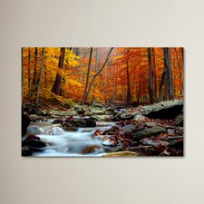 'Ultimate Truth' Photographic Print on Wrapped Canvas