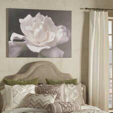 'Lovely Gardenia' Photographic Print on Wrapped Canvas