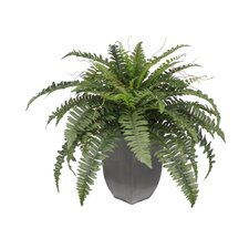 Artificial Fern Desk Top Plant in Decorative Vase