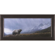 Stormwatch Grizzly by Terry Issac Framed Photographic Print