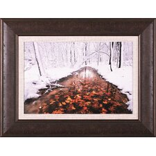 Autumn Passing by Jim Brandenburg Framed Photographic Print