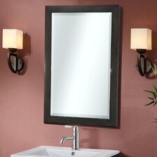 Lehigh Beveled Edged Wall Mirror
