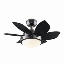 "24"" Corry 6 Blade Ceiling Fan"