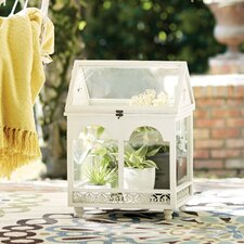 Gullette Stainless Steel Terrarium