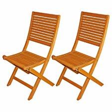 Cadsden Patio Folding Chair (Set of 2)