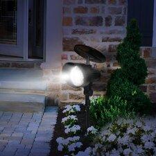 Motion Sensor Solar 12-Light LED Spot Light