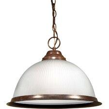 1-Light Pendant