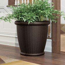 Willow Resin Pot Planter (Set of 2)