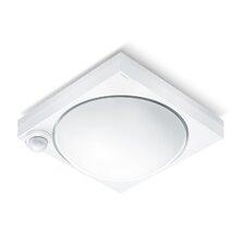 1 Light Outdoor Flush mount