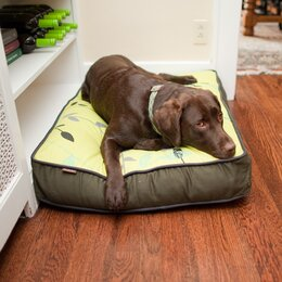 Dog Bed Covers Accessories