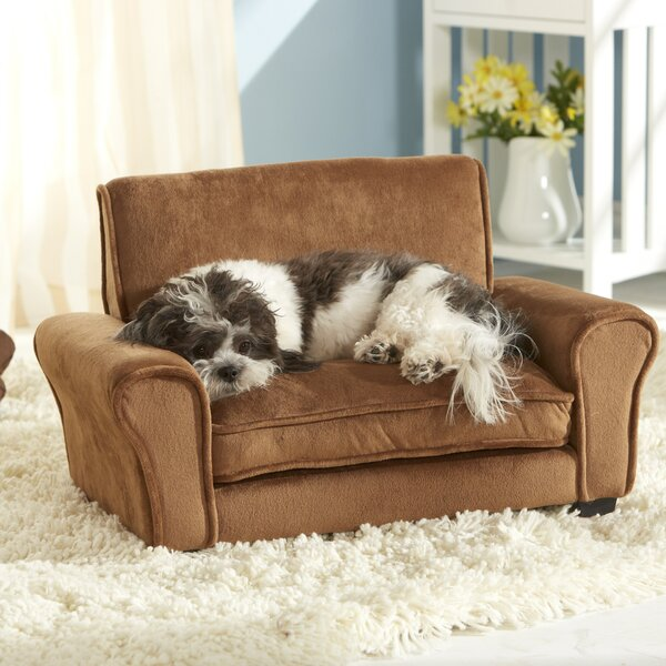 Pet Furniture You ll Love