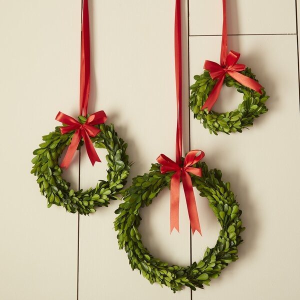 Birch Lane Boxwood Wreaths With Red Ribbon Amp Reviews