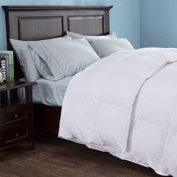 Giselle Heavy Fill Goose Down Comforter Reviews Joss