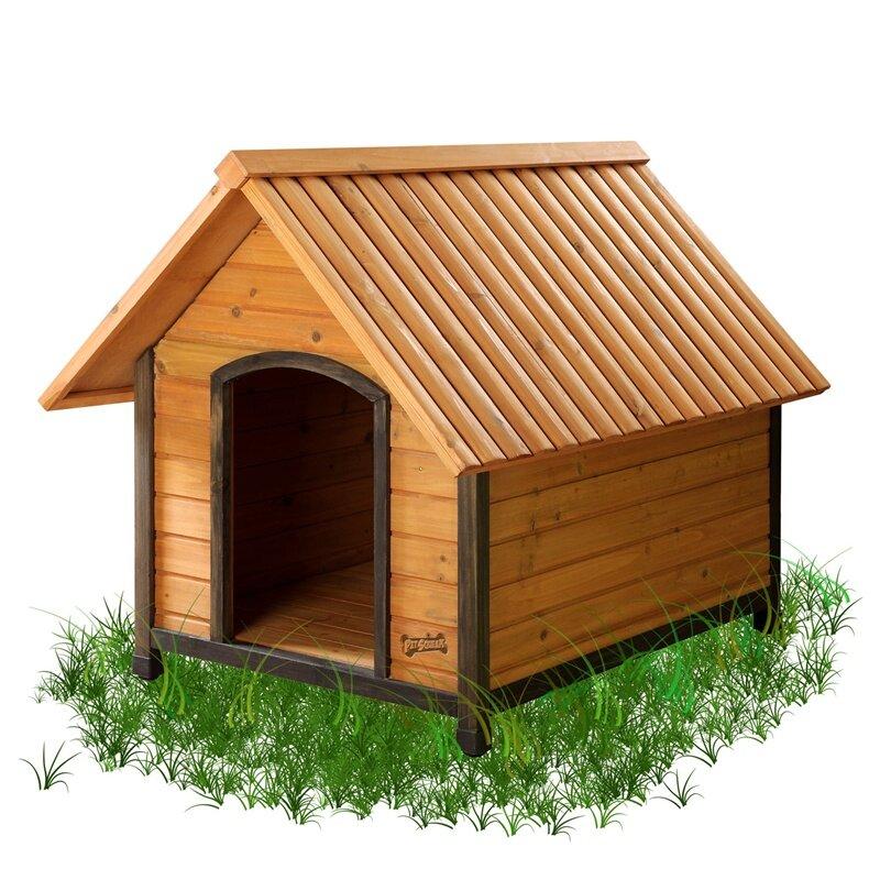 Pet Squeak Dog House