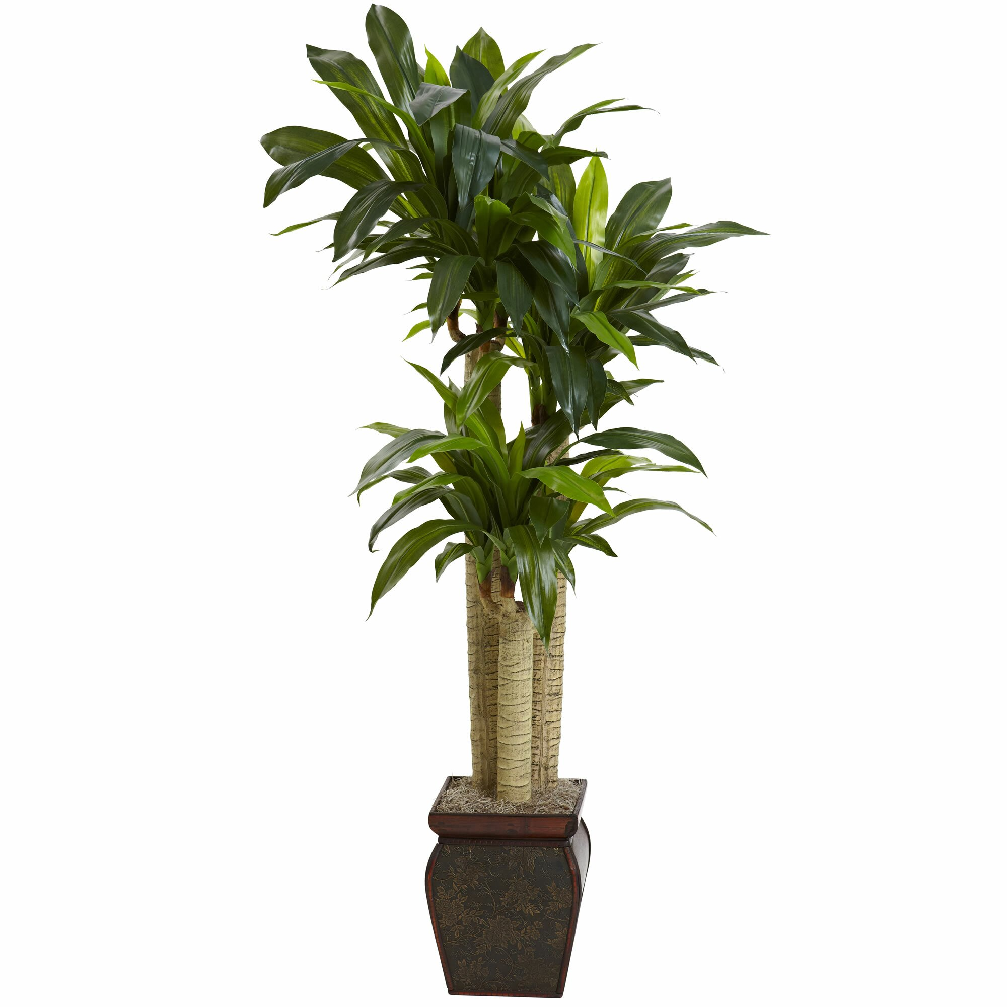 Decorative Indoor Trees Indoor Decorative Trees Wayfair