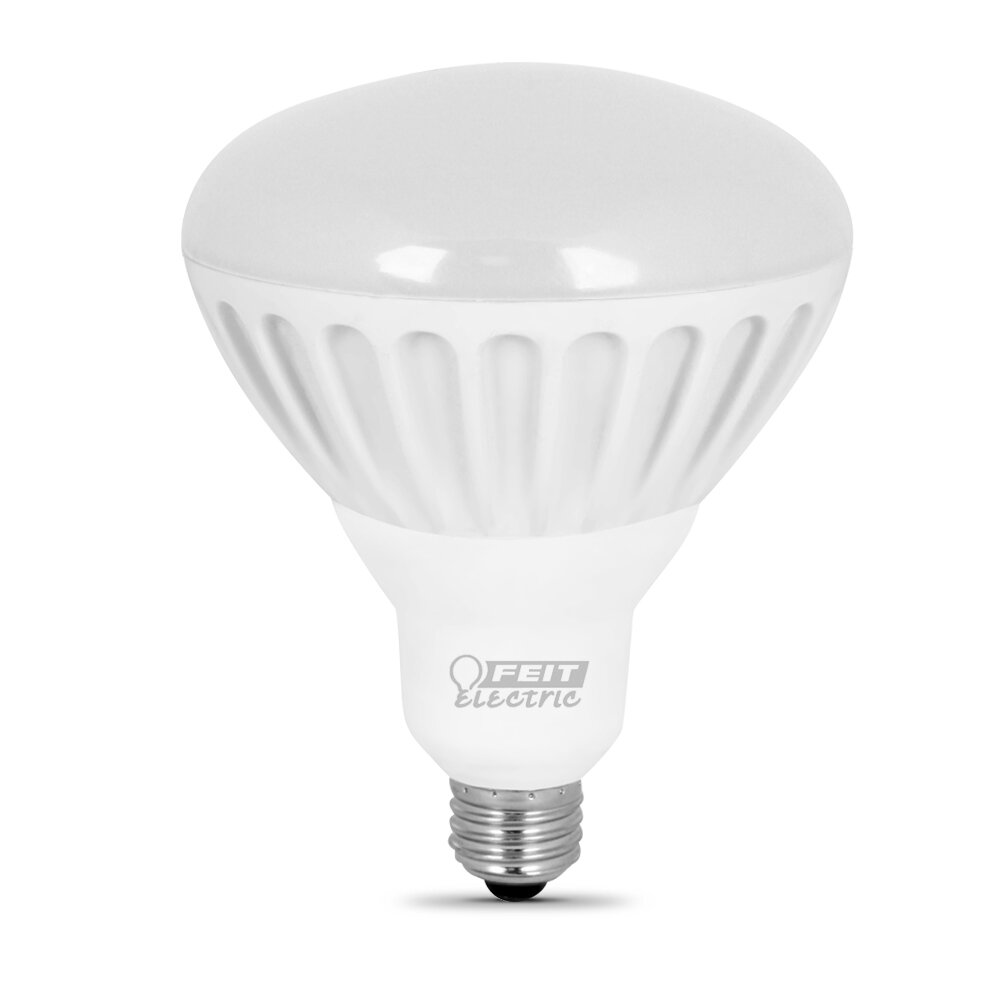 Feit Light Bulbs Review: FeitElectric 100W (2700K) LED Light Bulb,Lighting