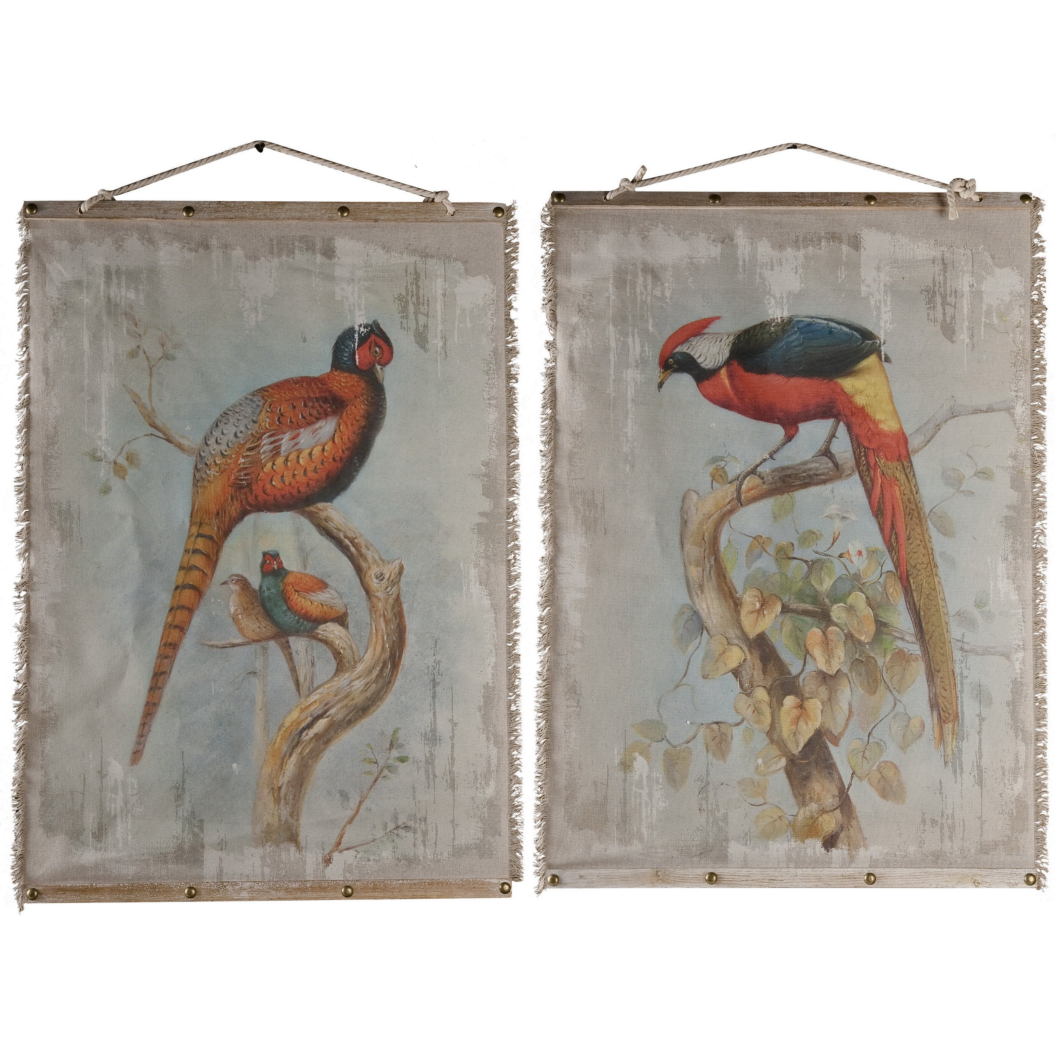 Home Oiseau Wall Decor 2 Piece Graphic Art Set Reviews Wayfair