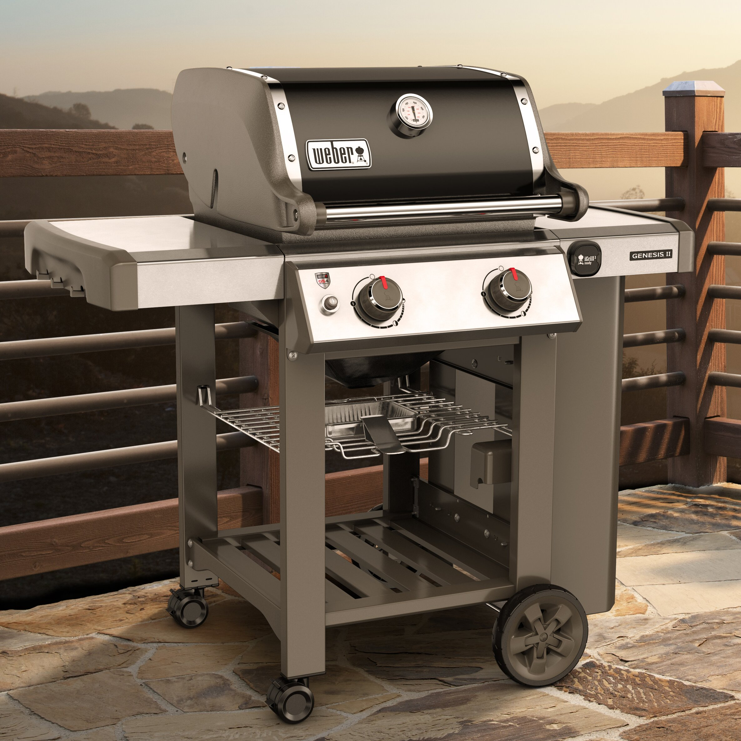 weber genesis ii e 210 2 burner propane gas grill with side shelves reviews wayfair. Black Bedroom Furniture Sets. Home Design Ideas