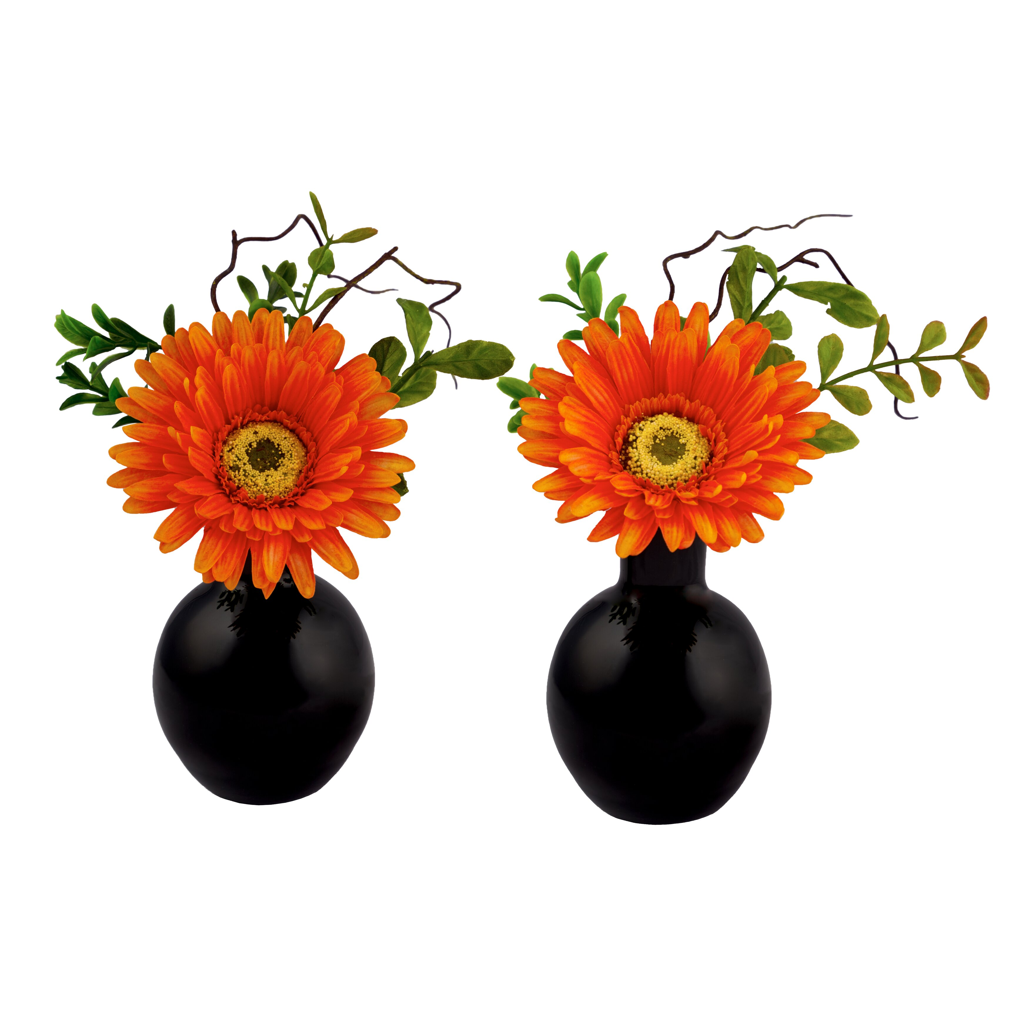 Gerbera Daisy Arrangements Vases: Red Vanilla Gerbera Daisy Arrangement In Glass Vase