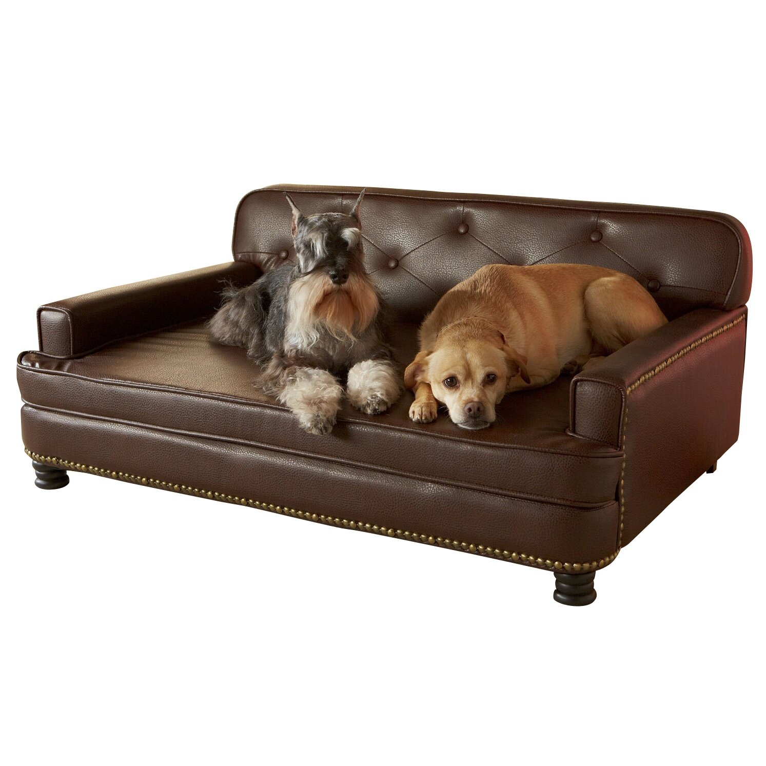 Enchanted Home Pet Library Sofa Reviews Wayfair
