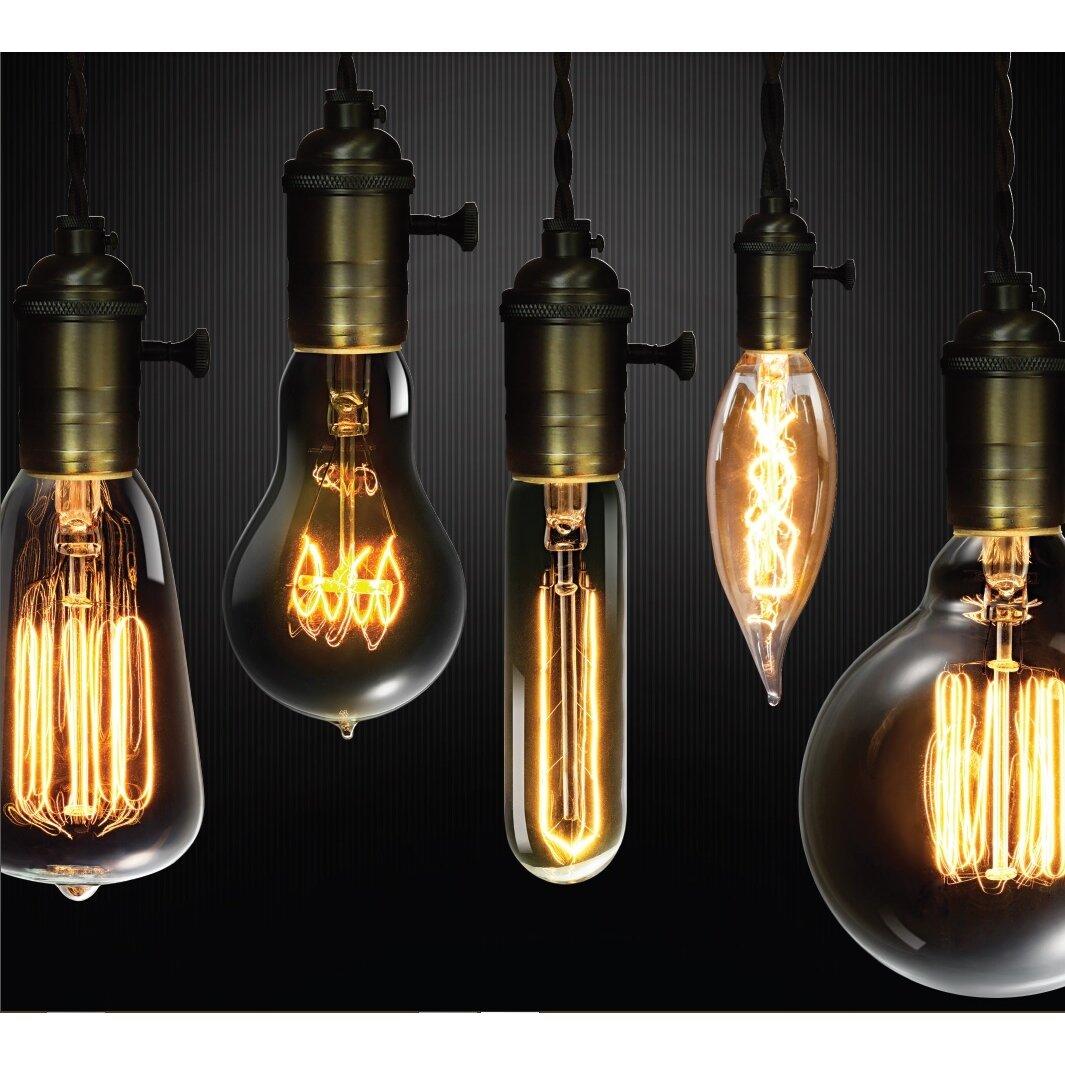 Globe Electric Company 60W Vintage Edison S60 Squirrel Cage Incandescent  Filament Light Bulb