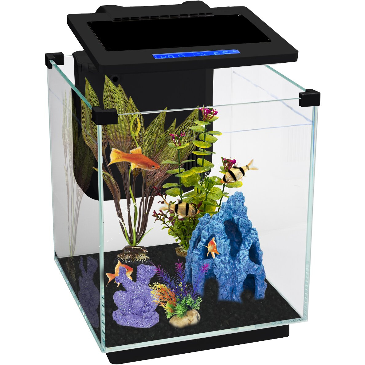 Fish aquarium price india - Fish Tank Aquarium Castle Hill