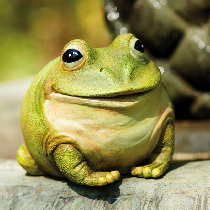 Evergreen Flag Garden Portly Frog Statue Reviews Wayfair