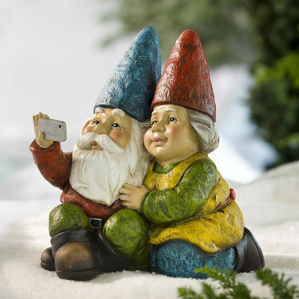 Plow Hearth Selfie Gnome Statue Reviews Wayfair