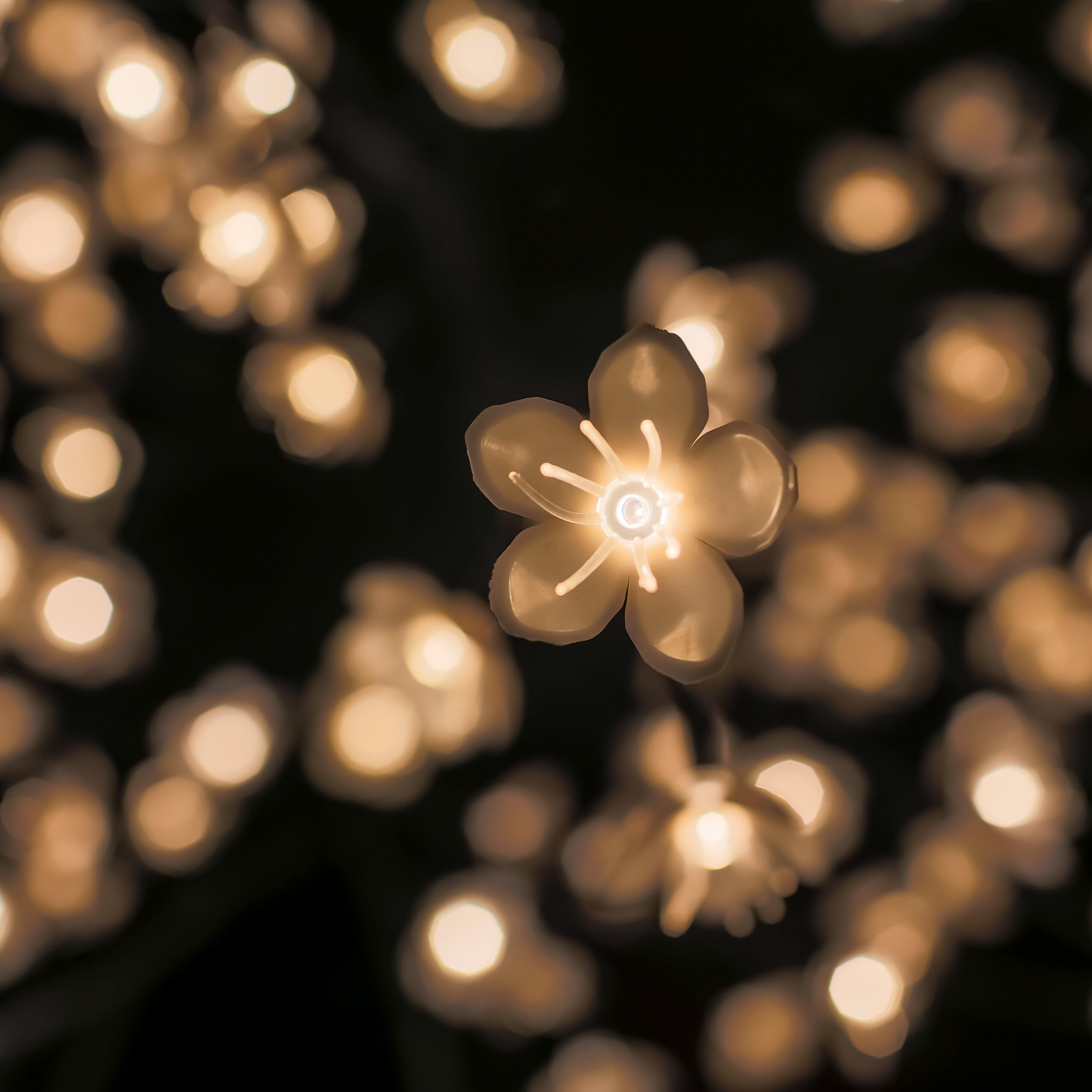 Outdoor String Lights Wayfair Inspiration - pixelmari.com