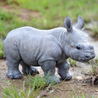 Hi-Line Gift Ltd. Baby Rhino Figurine & Reviews   Wayfair Rhinoceros Baby