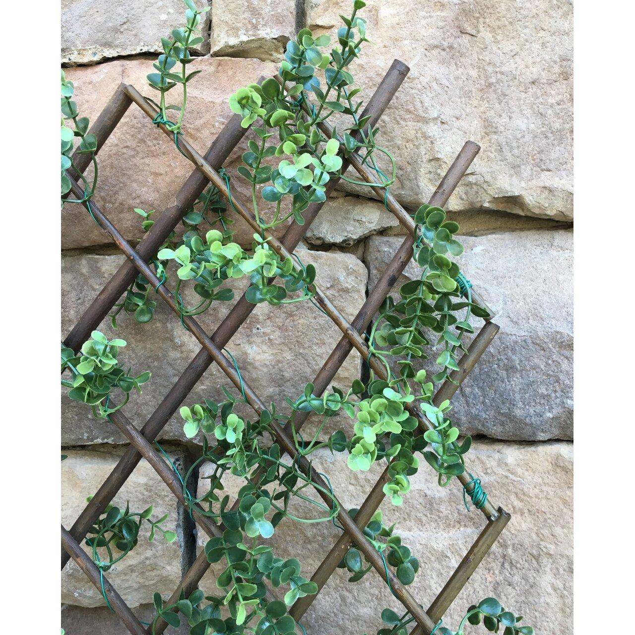 One Allium Way Faux Boxwood Willow Lattice Screen