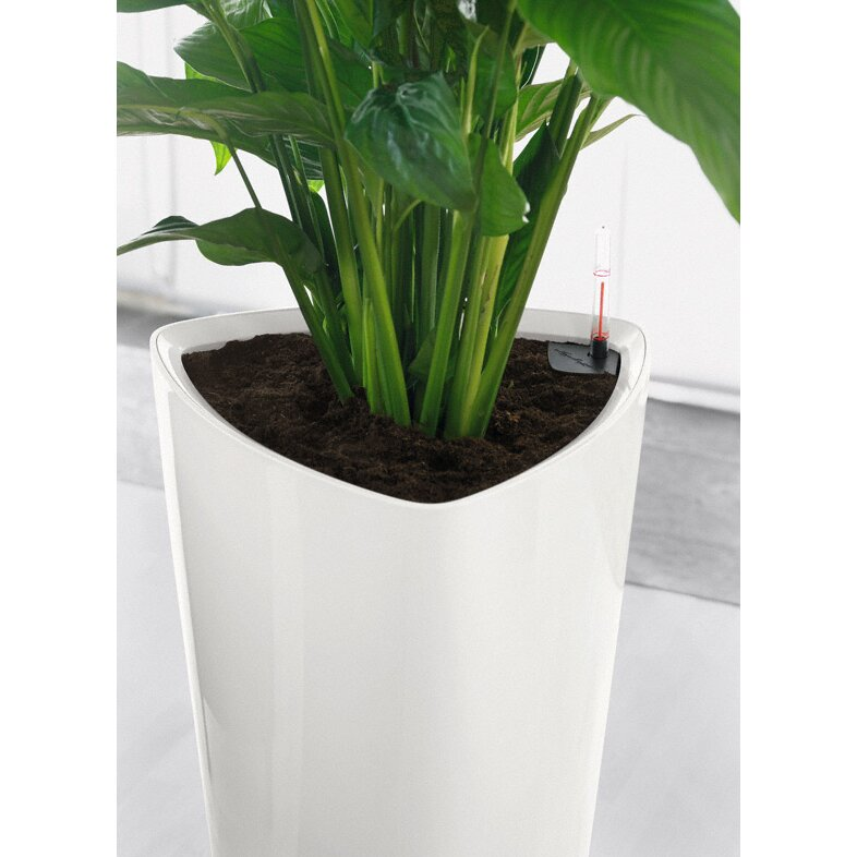 Lechuza delta premium self watering round pot planter reviews - Lechuza self watering planter ...